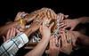 CopyrightKeyserImagesLLC-StateBasketball-0459