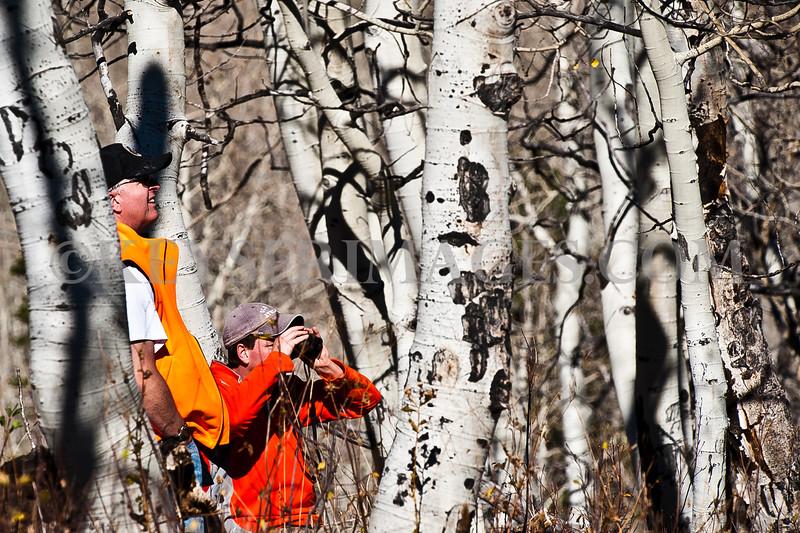 2010 Elk Hunt-0069