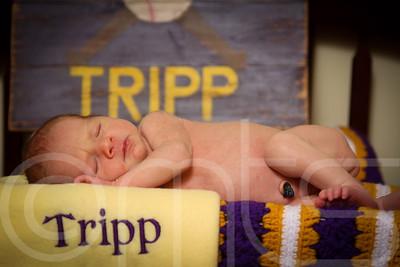 TRIPP-018
