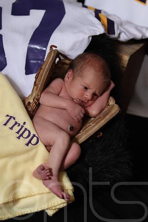 TRIPP-102