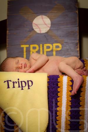 TRIPP-020