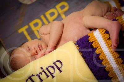 TRIPP-023