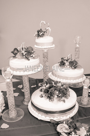 Ashley_Jacob_Wedding_010510
