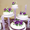 Ashley_Jacob_Wedding_010511