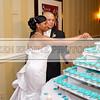 Bradley_Shamika_Wedding10333