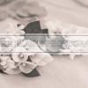 Bradley_Shamika_Wedding10017
