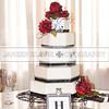 Josh Krystal wedding040008