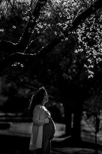 Maya Pregnancy Photos 2021 03 25 PRINT-3