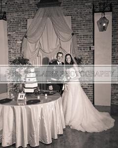 Josh Krystal wedding060011