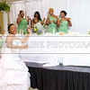 Shavien_Terry_Wedding10817