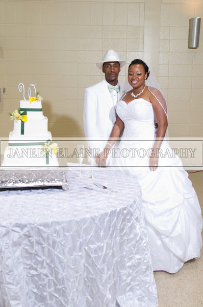 Shavien_Terry_Wedding10627