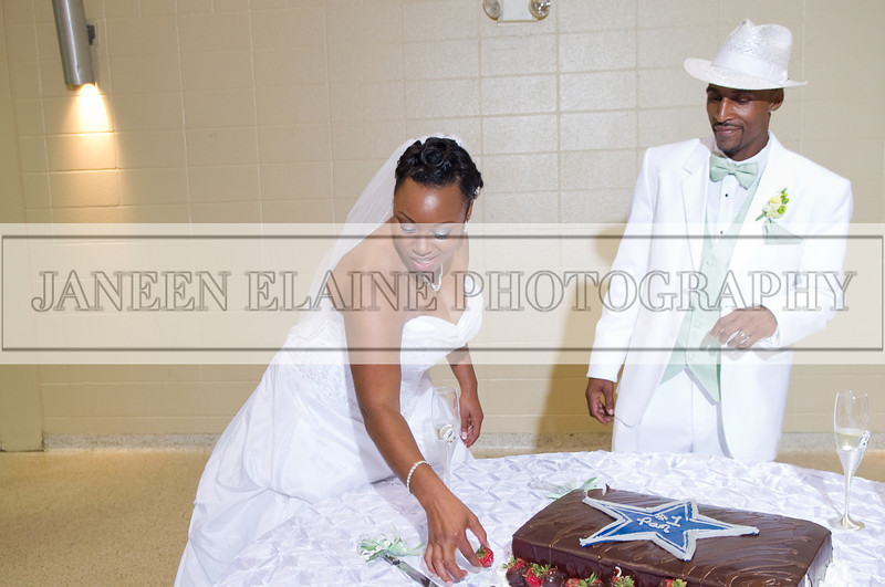 Shavien_Terry_Wedding10656