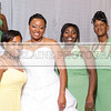 Shavien_Terry_Wedding10819