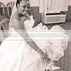 Shavien_Terry_Wedding10060