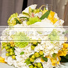 Shavien_Terry_Wedding10705