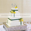 Shavien_Terry_Wedding10525