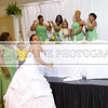 Shavien_Terry_Wedding10818