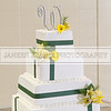 Shavien_Terry_Wedding10526