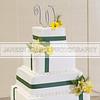 Shavien_Terry_Wedding10526
