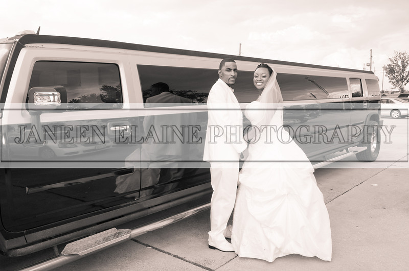 Shavien_Terry_Wedding10471