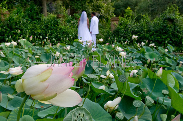 Shayla Warren Wedding010261