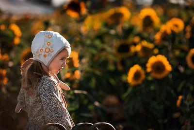 Noli in bonnet 2020 08 26-2