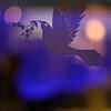Doug&Alicia_04_Reception-Trancend_8GB_300x-3458