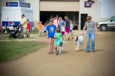 2014 Goodhue County Fair