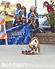 Tillman the worlds fastest skate boarding dog takes off in fron of the Natural Balance banner.