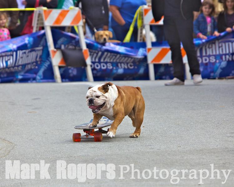 Tillman back on the skateboard
