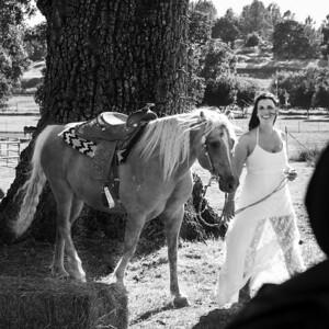 2014 Hamma Wedding-524