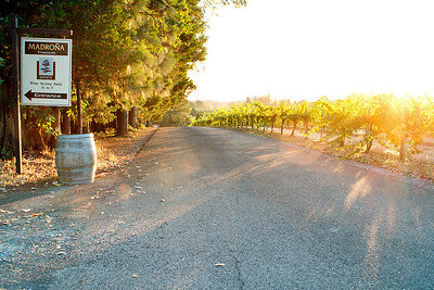 Madrona Winery-0881-Edit
