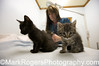 Dr Monica Thompson, founder of Nine Lives Foundation, examines two kittens.