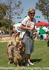 The OTHER Dog Show - Day 1<br /> Best in Show Winner