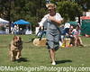 The OTHER Dog Show - Day 1<br /> Most Muttilicious Winner