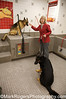 Megan and Rusty<br /> German Shepherd Rescue of Northern California