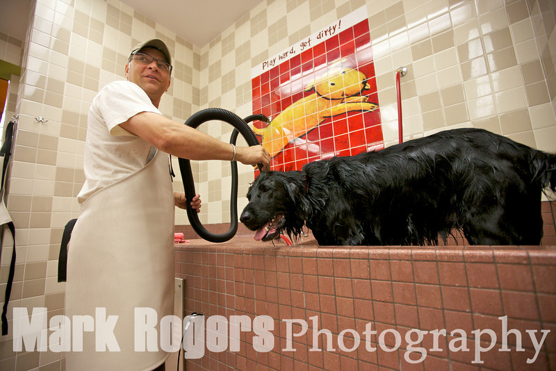 Joe Baylock dries off his dog, Roxanne, at Pet Food Express Burlingame