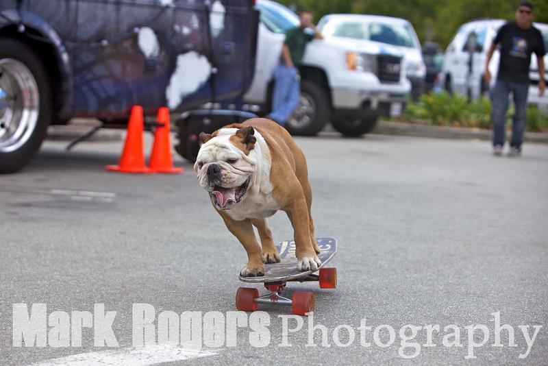 Tillman leans into a turn on his skateboard
