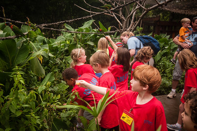2013 Zoo Summer Camp 020