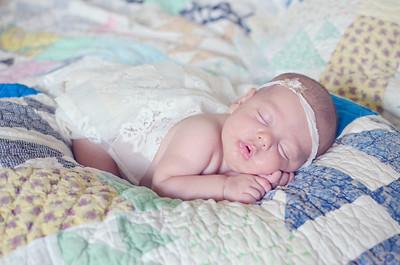 Piper | Newborn