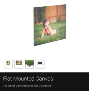Wall Art: Canvas-Flat Mount