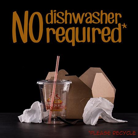 No Dishwasher