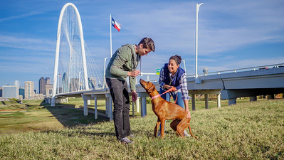 113017_10413_Bridge Skyline_Walk Dog