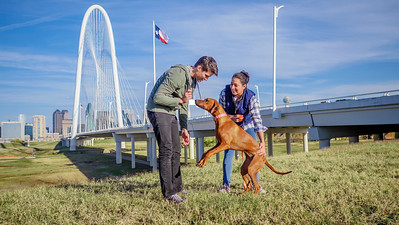 113017_10409_Bridge Skyline_Walk Dog