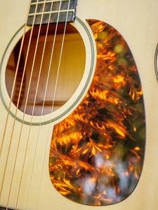 070217_8056_Ian - Acoustic 001