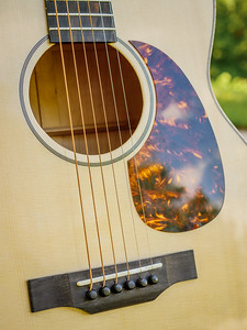070217_8053_Ian - Acoustic 001