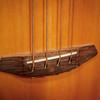 082217_7055_Breedlove Bass