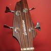082217_7054_Breedlove Bass