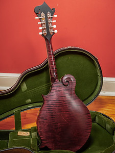 082217_7067_Collings Mandolin
