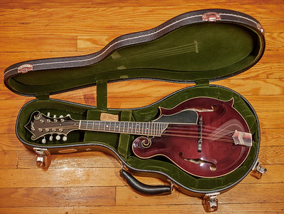 082217_7063_Collings Mandolin